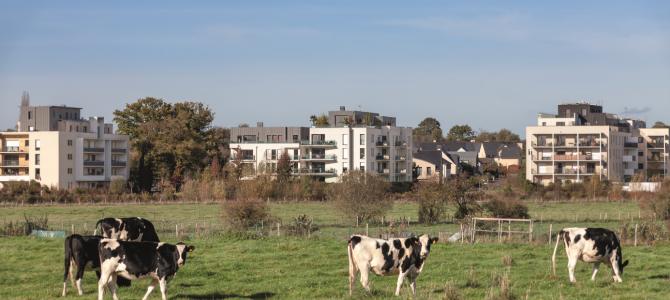 A Rennes Métropole, un urbanisme favorable à la santé